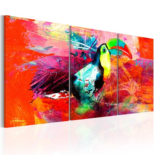 Quadro - Colourful Toucan - Quadri e decorazioni