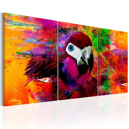 Quadro - Jungle of Colours - Quadri e decorazioni