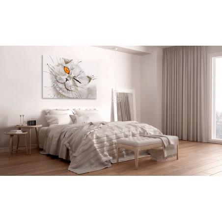 Quadro - Grey Cat - Quadri e decorazioni