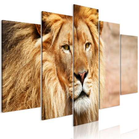 Quadro - The King of Beasts (5 Parts) Wide Orange - Quadri e decorazioni
