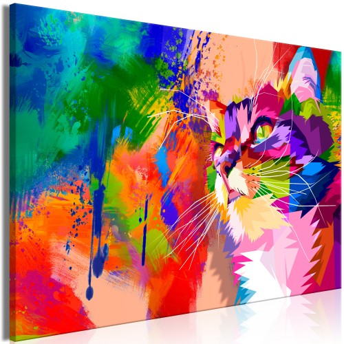 Quadro - Colourful Cat (1 Part) Wide - Quadri e decorazioni