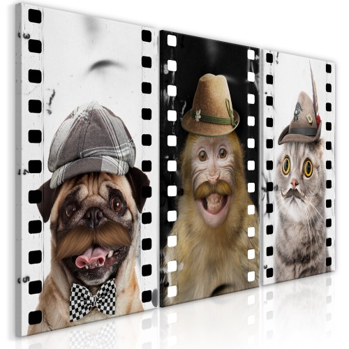 Quadro - Funny Pets (Collection) - Quadri e decorazioni