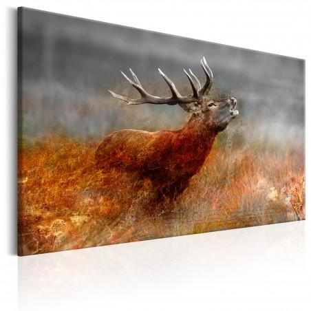 Quadro - Roaring Deer - Quadri e decorazioni