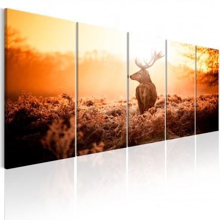 Quadro - Deer at Sunset - Quadri e decorazioni