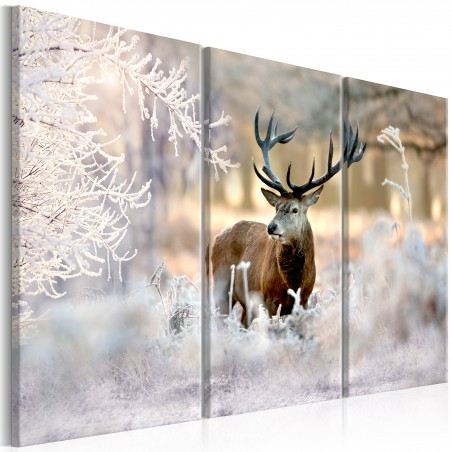 Quadro - Deer in the Cold I - Quadri e decorazioni