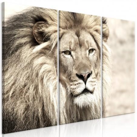 Quadro - The King of Beasts (3 Parts) Beige - Quadri e decorazioni