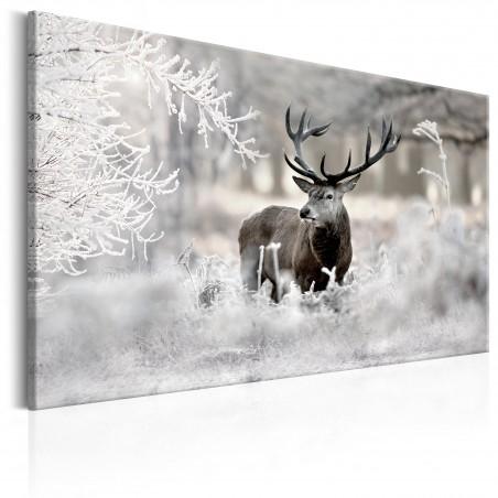 Quadro - Lonely Deer - Quadri e decorazioni