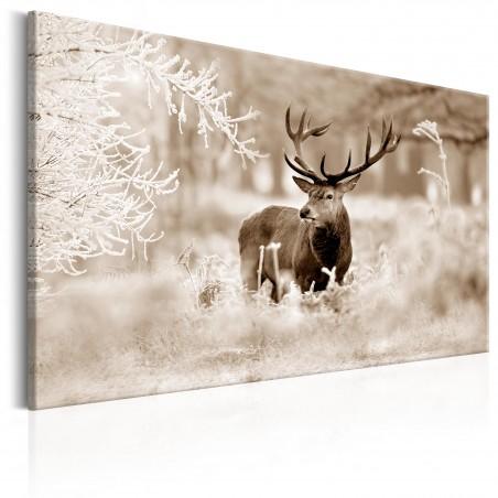 Quadro - Deer in Sepia - Quadri e decorazioni