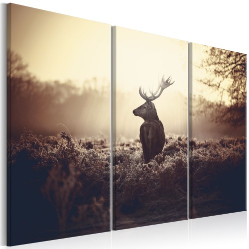 Quadro - Lurking Deer I - Quadri e decorazioni