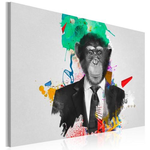 Quadro - Sig. Scimmia - Quadri e decorazioni
