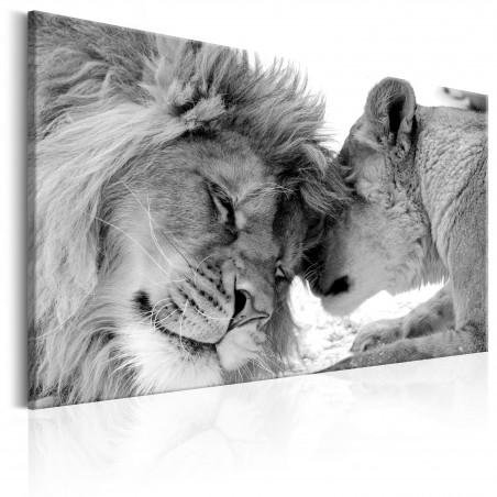Quadro - Lion's Love - Quadri e decorazioni