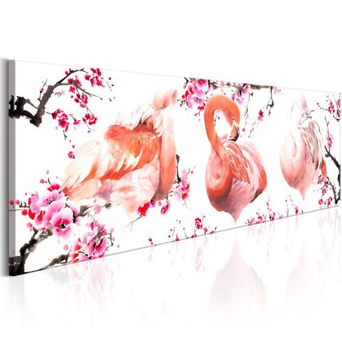 Quadro - Beauty of Birds - Quadri e decorazioni