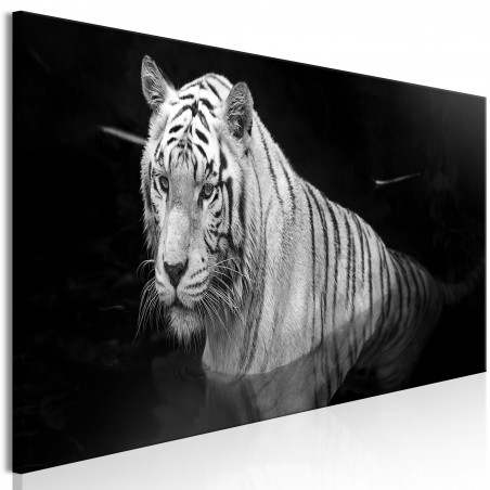 Quadro - Shining Tiger (1 Part) Black and White Narrow - Quadri e decorazioni