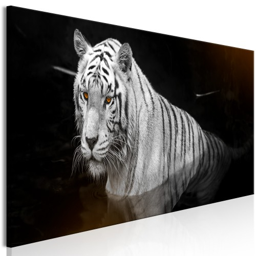 Quadro - Shining Tiger (1 Part) Orange Narrow - Quadri e decorazioni