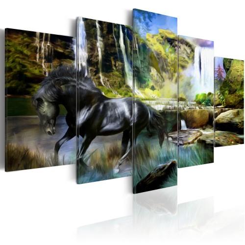 Quadro - Destriero nero sullo sfondo di una cascata paradisiaca - Quadri e decorazioni