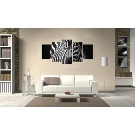 Quadro - Sguardo di zebra - Quadri e decorazioni