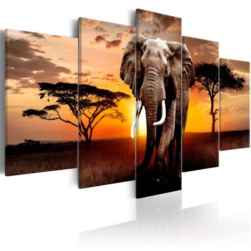 Quadro - Elephant Migration - Quadri e decorazioni