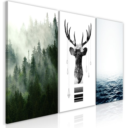 Quadro - Chilly Nature (Collection) - Quadri e decorazioni