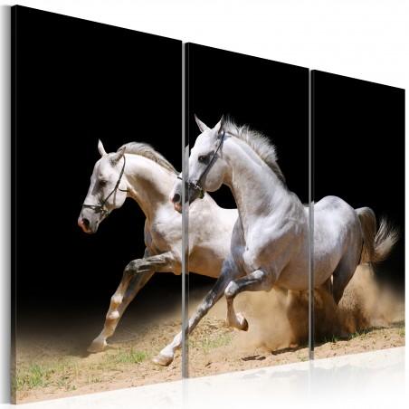 Quadro - Cavalli: potenza e velocita' - Quadri e decorazioni