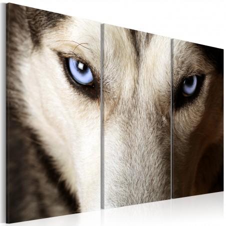 Quadro - Face to face with fear - Quadri e decorazioni