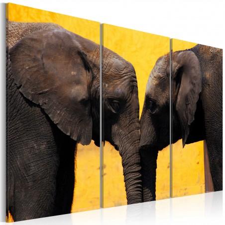 Quadro - Coppia di elefanti che si bacia - Quadri e decorazioni