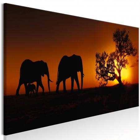 Quadro - Elephant Family (Orange) - Quadri e decorazioni