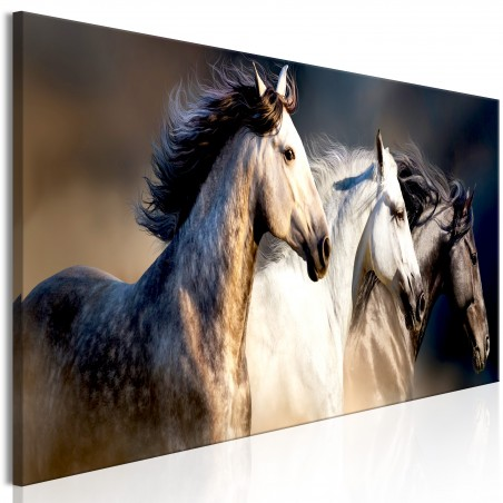 Quadro - Sons of the Wind (1 Part) Narrow - Quadri e decorazioni