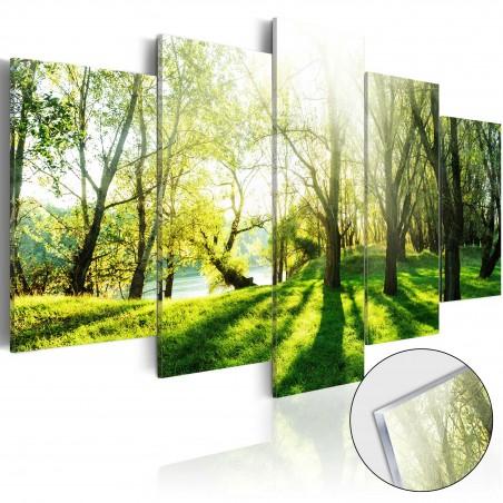 Quadri su vetro acrilico - Green Glade [Glass] - Quadri e decorazioni