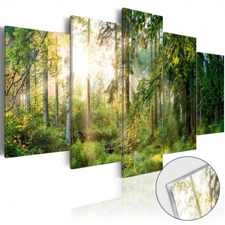 Quadri su vetro acrilico - Green Sanctuary [Glass] - Quadri e decorazioni