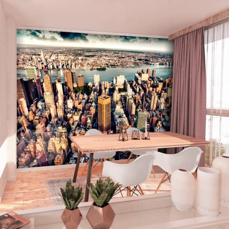 Fotomurale - Bird's Eye View of New York - Quadri e decorazioni