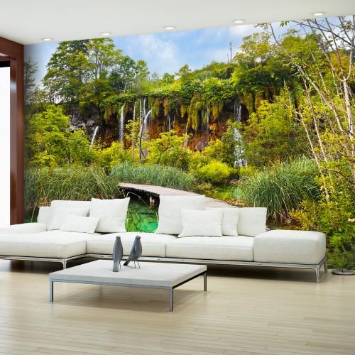 Fotomurale - Green oasis - Quadri e decorazioni