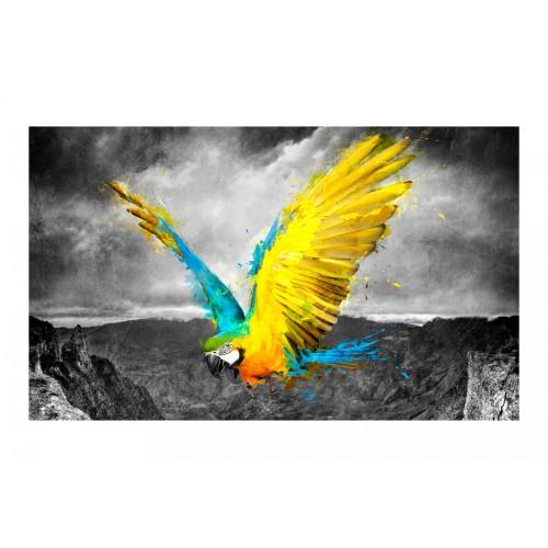 Fotomurale - Exotic parrot - Quadri e decorazioni