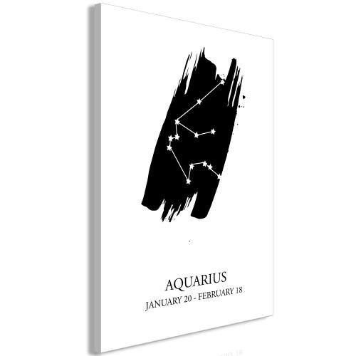 Quadro - Zodiac Signs: Aquarius (1 Part) Vertical - Quadri e decorazioni