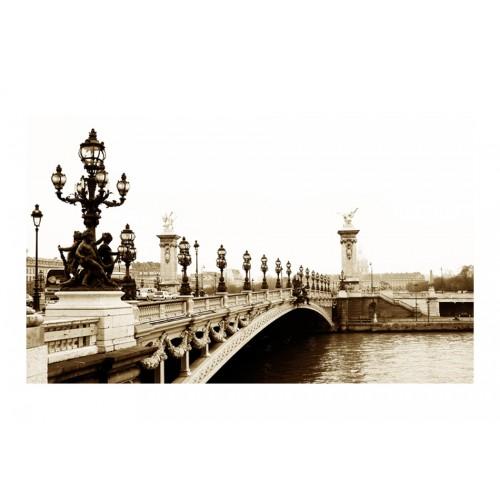 Fotomurale - Il ponte di Alessandro III, Parigi - Quadri e decorazioni