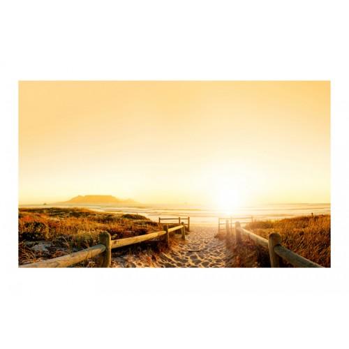 Fotomurale - Andando verso il sole... - Quadri e decorazioni
