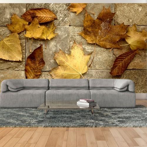 Fotomurale - Preludio d'autunno - Quadri e decorazioni
