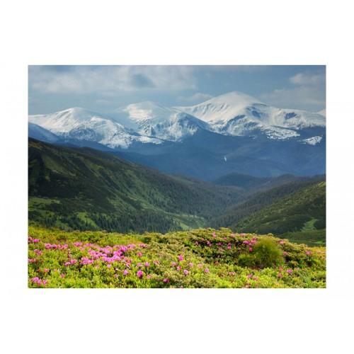 Fotomurale - Paesaggio di montagna in primavera - Quadri e decorazioni