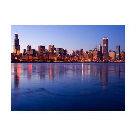 Fotomurale - Icy Downtown Chicago - Quadri e decorazioni
