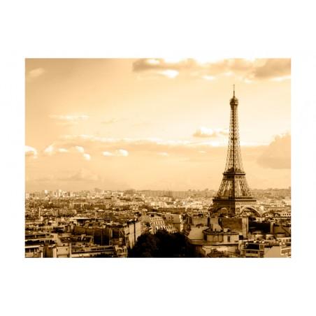 Fotomurale - Parigi - panorama - Quadri e decorazioni