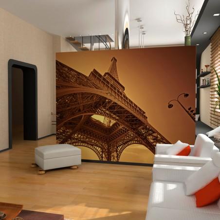 Fotomurale - Forza di Parigi - Quadri e decorazioni