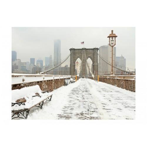 Fotomurale - Ponte newyorkese coperto dalla neve - Quadri e decorazioni