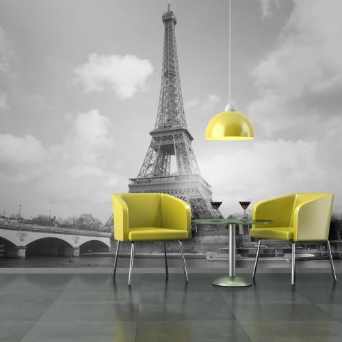 Fotomurale - Senna e Torre Eiffel - Quadri e decorazioni