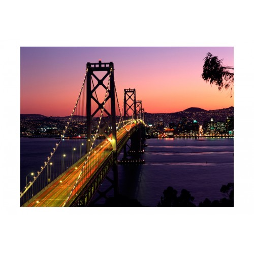 Fotomurale - Charming evening in San Francisco - Quadri e decorazioni