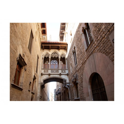 Fotomurale - Barcelona Palau generalitat in gothic Barrio - Quadri e decorazioni