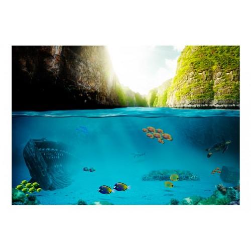 Fotomurale - Sotto la linea di galleggiamento - Quadri e decorazioni