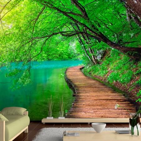 Fotomurale - Green peace - Quadri e decorazioni