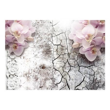Fotomurale - Bright red orchids - Quadri e decorazioni