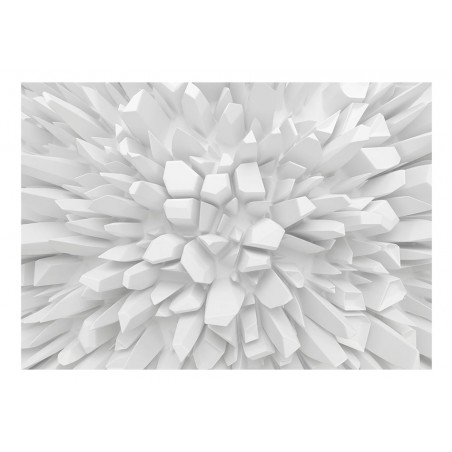 Fotomurale - White dahlia - Quadri e decorazioni