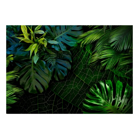 Fotomurale - Dark Jungle - Quadri e decorazioni