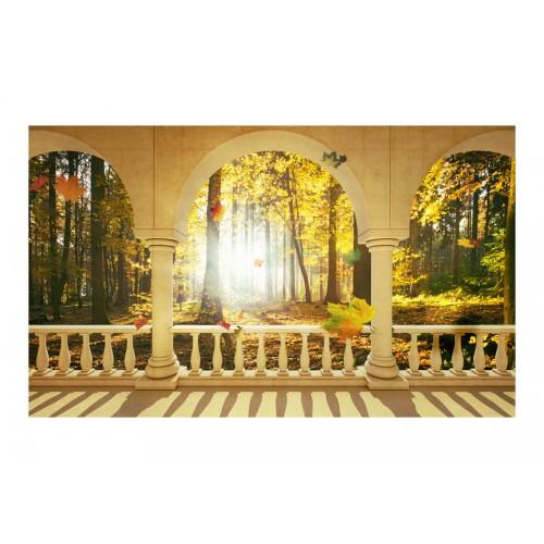 Fotomurale - Bosco autunnale dei sogni - Quadri e decorazioni